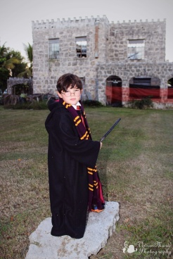 He must save Hogwarts!